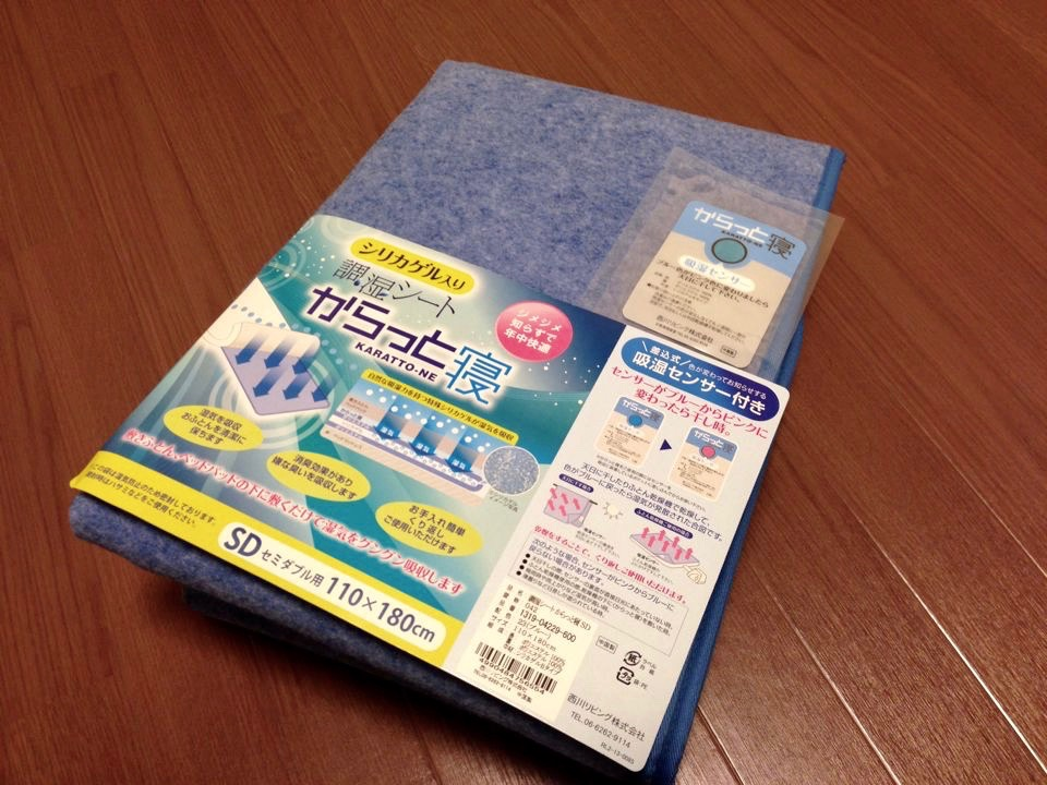 Dealing With Mold In Japan During The Rainy Season