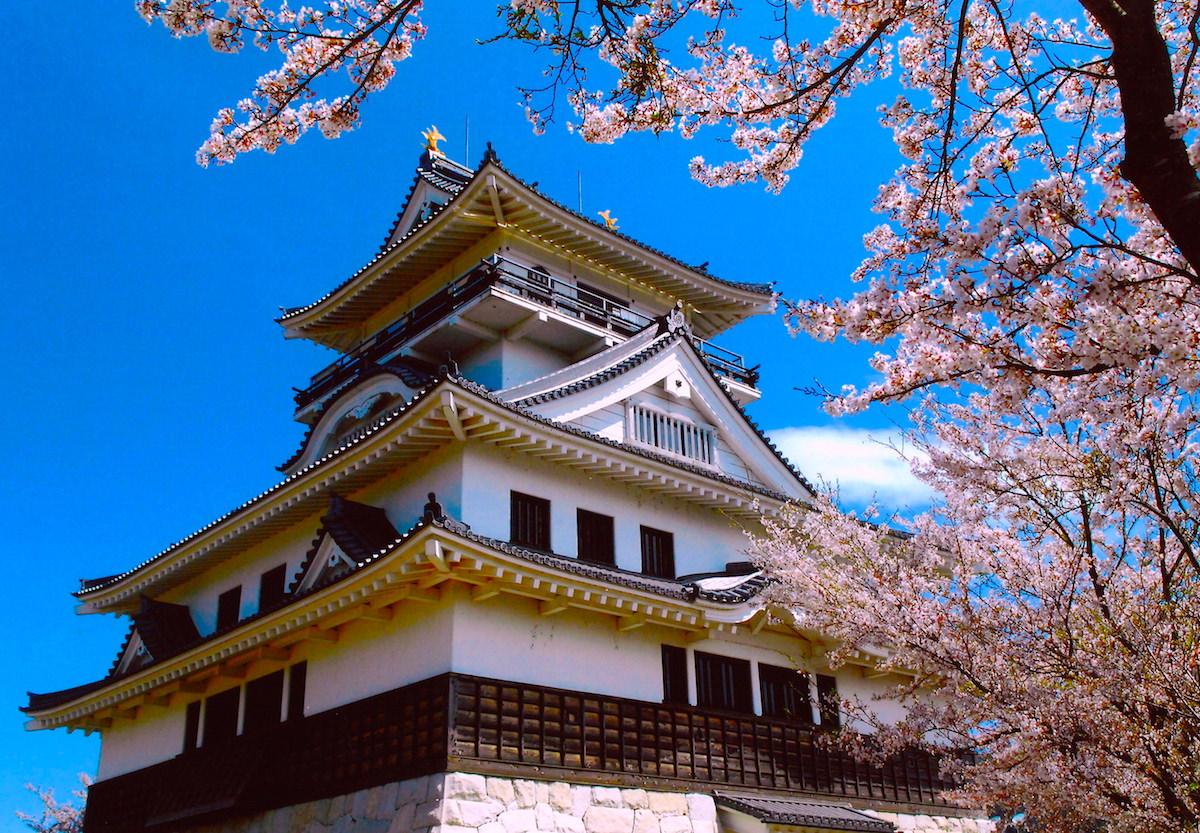 dog castle Aichi Prefecture Japan