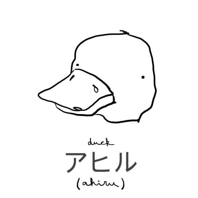 Animal: Duck 鴨(カモ/アヒル)