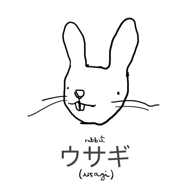 Animal: Rabbit 兎(ウサギ)