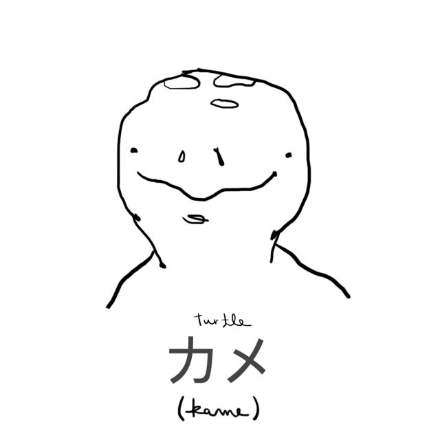 Animal: Turtle 亀 (カメ)