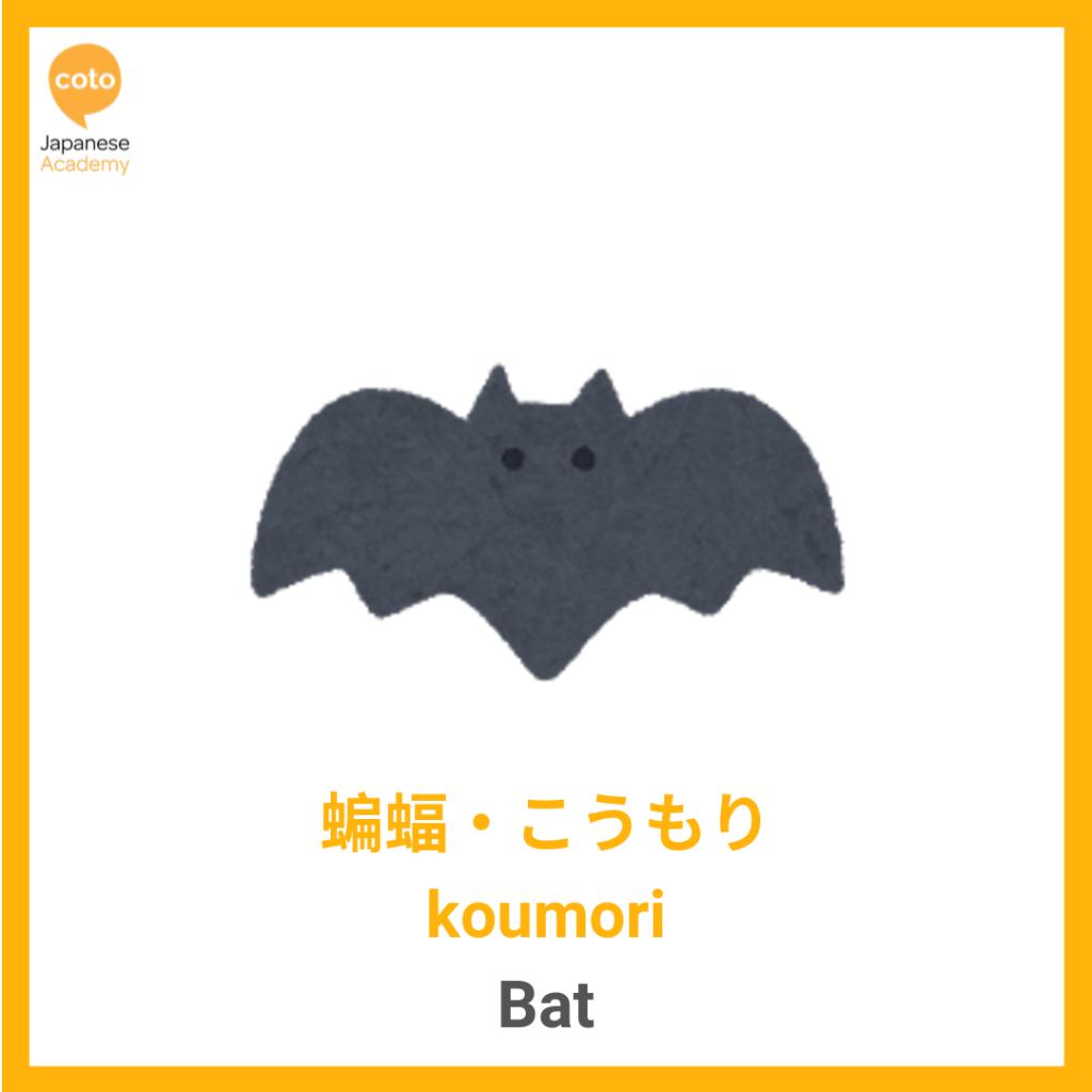 Halloween, Bat, image, photo, picture, illustration