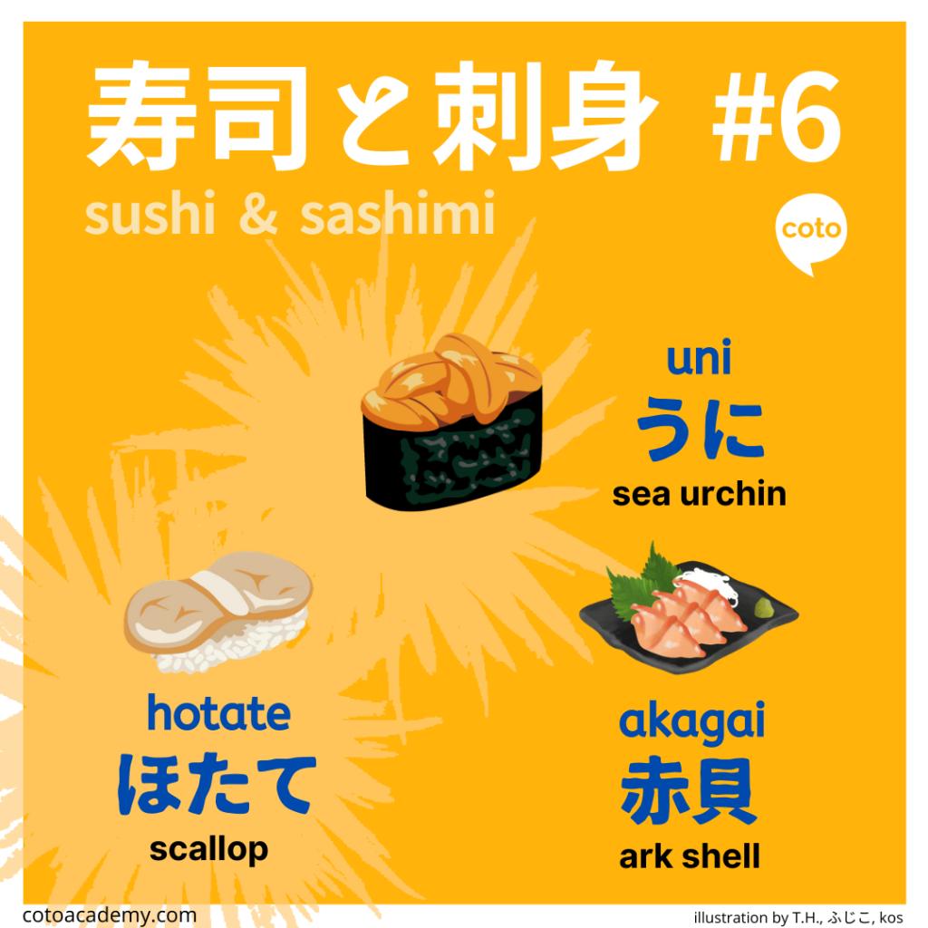 sushi and sashimi shellfish and sea urchin sushi